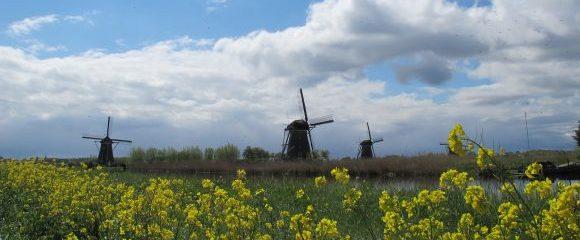 Kinderdijk: Ort der Windmühlen