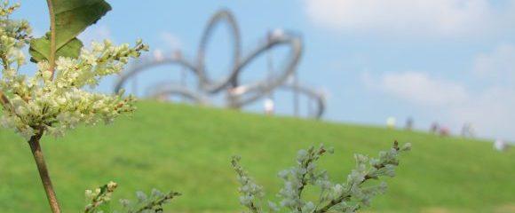 Ruhrgebiet: 6 Halden in 12 Monaten