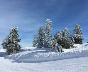 Berge Schnee