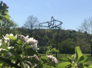Ostern zu Hause Duisburg
